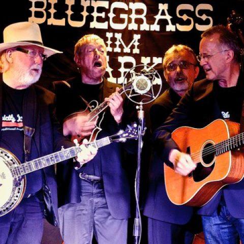Bluegrass Day Bluegrass Im Park