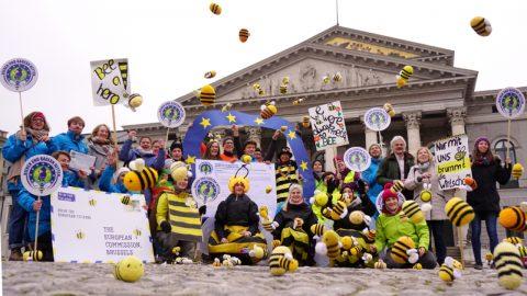 Bienen und Bauern