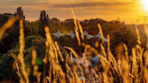 Cro Tollwood Sommerfestival