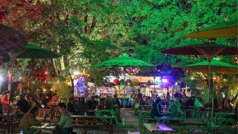 Asia Garten Bio-Gastronomie Tollwood Sommerfestival